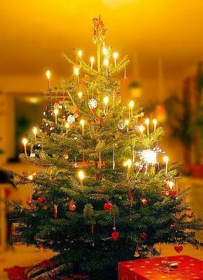 albero-di-natale-con-candeline[1]